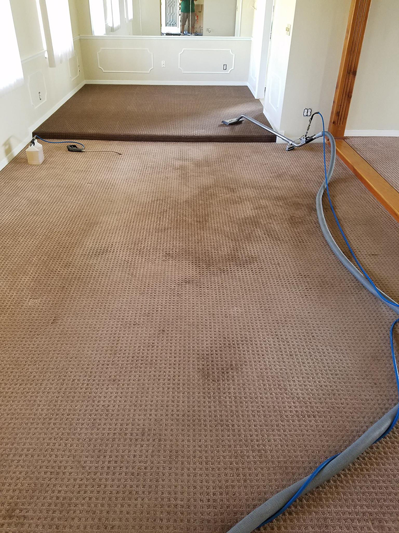 Dirty carpets and cleaning equipment