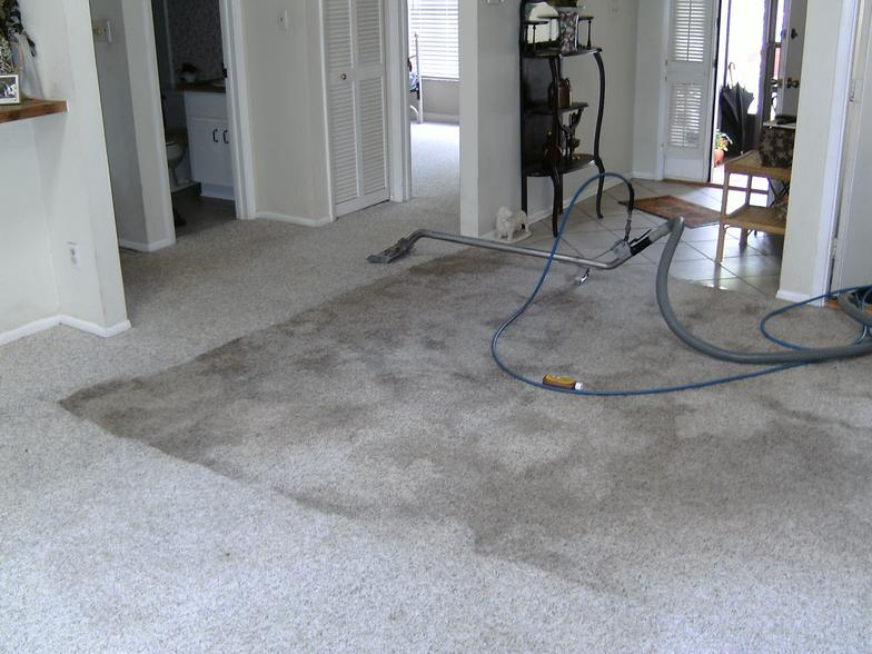 Dirty and clean carpets after professional cleaning