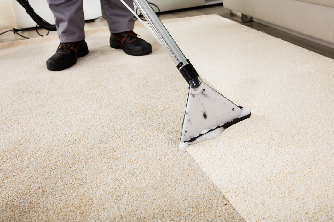 Professional carpet cleaner vacuuming carpet in an apartment