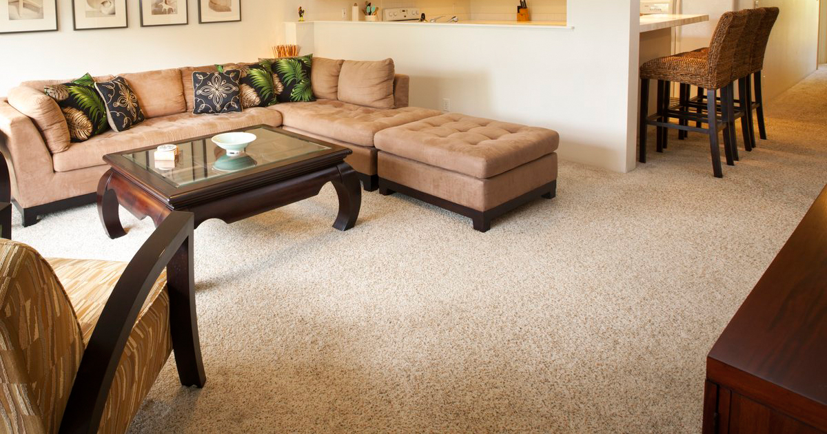 10 Interesting Facts About Carpet
