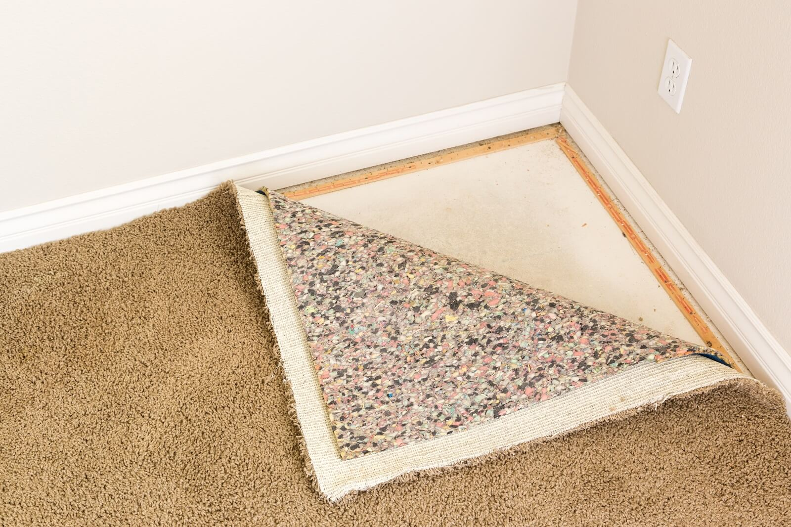 How To Deal With Carpet Mold