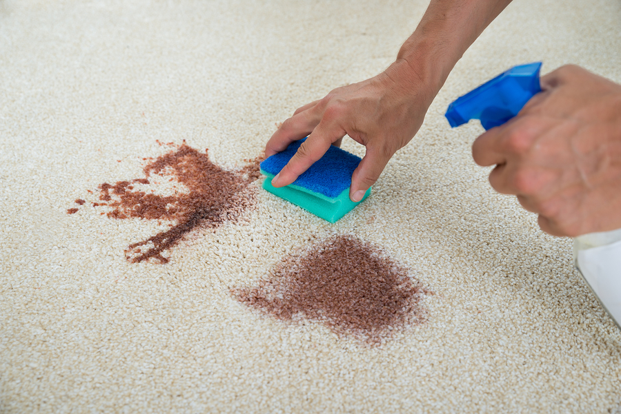 8 Common Carpet Cleaning Mistakes