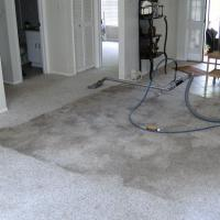 Dirty Gray carpet after